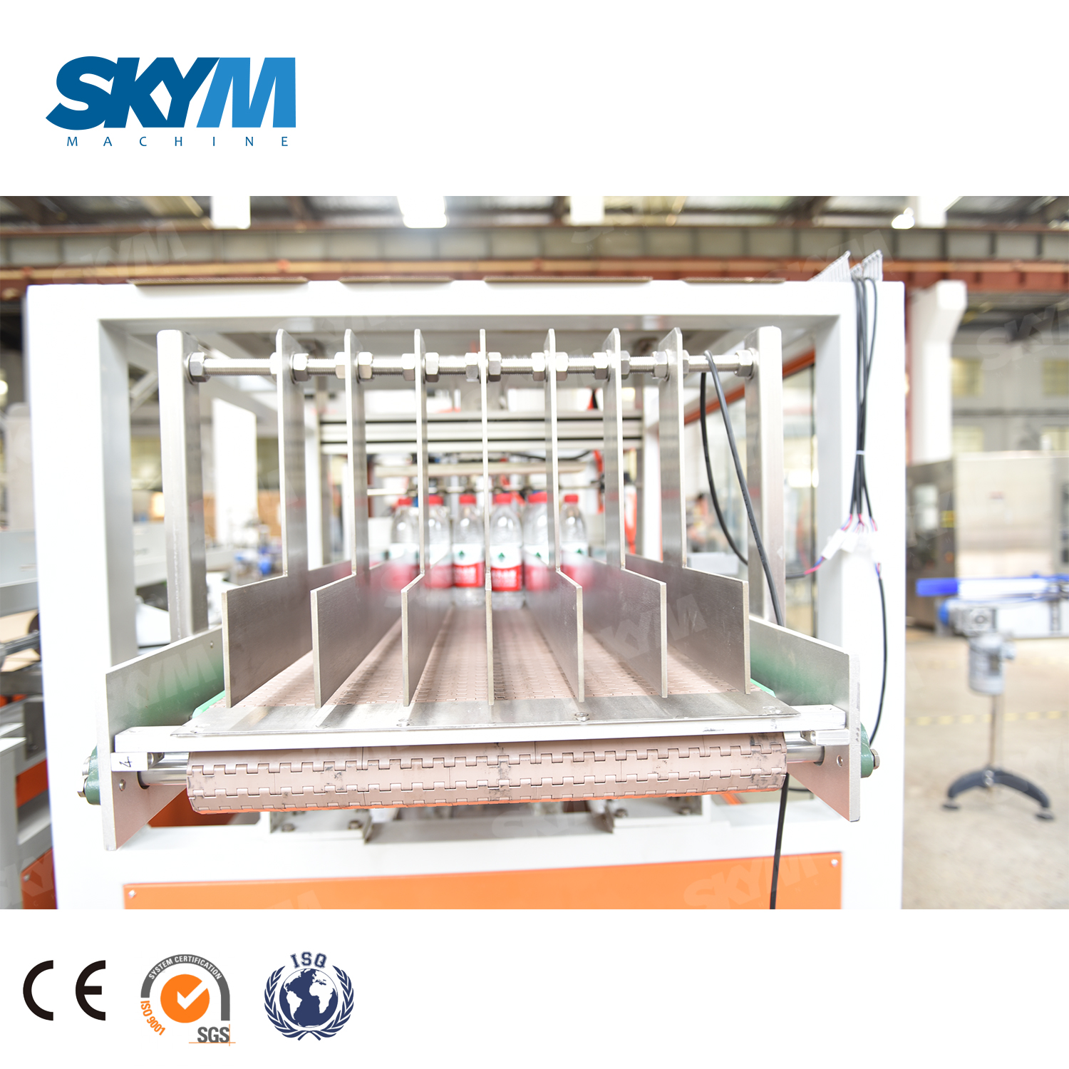 Carton Box Case Packer Packing Machine for Bottle